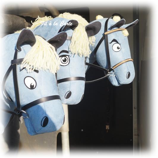 Poneys bleu
