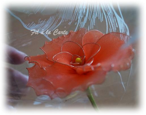 Fleur orangée2
