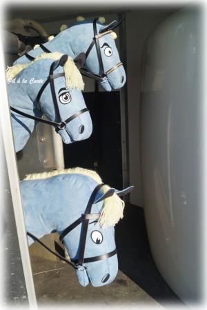 Poneys bleu2